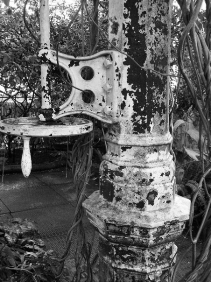 temperate house kew gardens structure building,painted metal image with plants, jenny meehan fine art photography,fine artist female contemporary,monochrome image