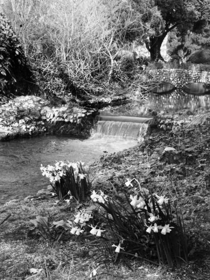 jenny meehan jamartlondon photography monochrome